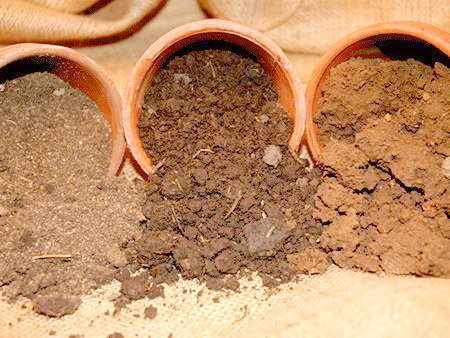 Подготовка почвы - фото